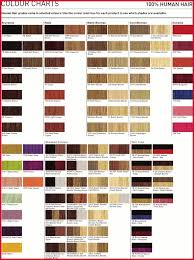 Goldwell Topchic And Colorance Color Chart Hair Goldwell