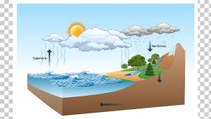 Diagram Water Cycle Nature Drawing Illustration Png Clipart