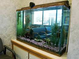 fish for office. Fish Tank Office Cubicle Compact Extraordinary Aquarium Table Design For