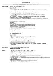 Salesforce Resume Sample Salesforce Analyst Resume Samples Velvet Jobs 22