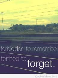Forbidden Love Quotes Classy Best Forbidden Love Quotes Pics Sayings