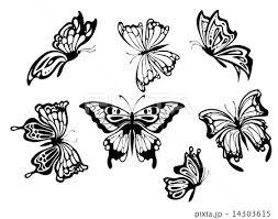 シルエット 蝶 飛ぶ ちょうちょ 羽ばたくの写真素材 Pixta