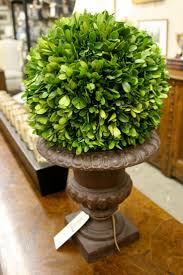 Boxwood ball