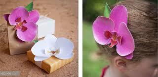 Paper Orchid Flower Diy Paper Orchid
