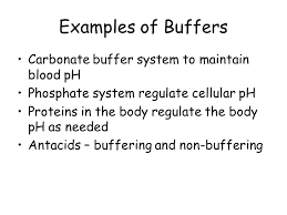 Examples Of Buffers Magdalene Project Org