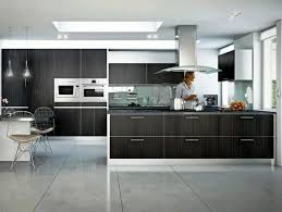 Small Picture Modern Kitchen Design GuidelinesOptimizing Home Decor Ideas