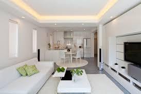 White Docorate Small Modern Zen Style Living Room Modern Living Room