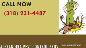 alexandria pest control. Modren Control Alexandria Pest Control  Service In With