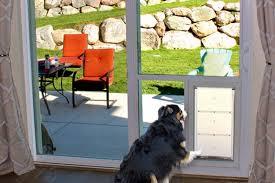 sliding glass pet door utah doggy