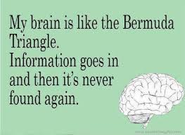 Best Funny Thoughts Funny quotes thoughts brain bermuda triangle information great best 10 42194