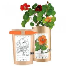 garden in a bag. Garden In A Bag . C