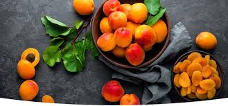 Apricot Season Is Here The Beet Blog
