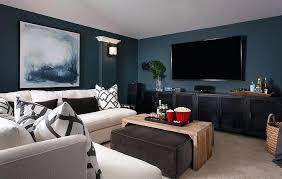 dark media room. Dark Media Room View Full Size Blue