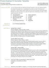 Resume Templates Customer Service Beauteous Customer Service Resume Template Summary Skills Career Professional