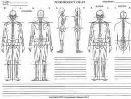 Postural Assessment Tools Google Search Assessment
