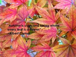 Beautiful Fall Quotes Best of 24 Beautiful Quotes About The Fall Season Inspiration