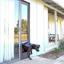 sliding glass door pet door full size of large dog door for sliding glass door sliding door dog door insert pet sliding glass door pet door insert home