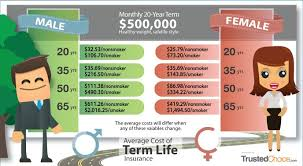 Term Life Insurance Rate Quotes Term Life Insurance Rate Quotes Mesmerizing Download Life Insurance 49