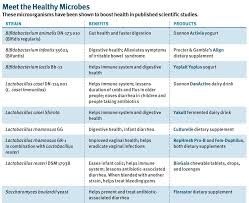 Types Of Probiotics Probiotics