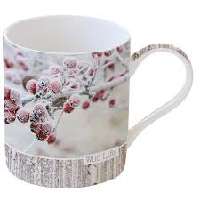 Easy Life Design Coffee Mugs Porcelain Mug 350 Ml In Color Box Red Berries