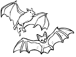 Small Picture Bat Coloring Pages for Kids Printable Images Archives Printable