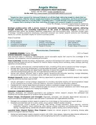 Executive Resume Internal Sample Fina Peppapp