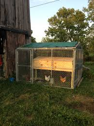 10x10 Chicken Coop Design Chicken Coop From A 10x10 Dog Kennel Wrapped In Chicken Wire