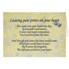 Beautiful Sympathy Quotes Best of Sympathy For Loss Of Pet Sympathy Quotes Loss Of Pet QuotesGram