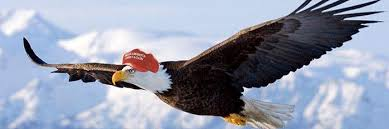 Image result for trump with bald eagle