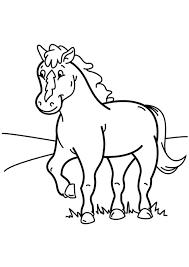 Kleurennu Paard 40 Kleurplaten
