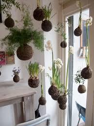 indoor gardening ideas. DIY String Gardens \ Indoor Gardening Ideas