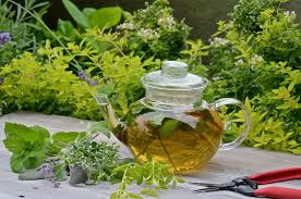 herb tea mini