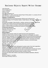 Business Objects Resume Sample 5 Examples Of Sap Bi Developer 6 Consultant  Letter Introduction Rubri