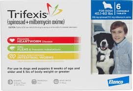 where to buy trifexis cheap. Modren Trifexis Trifexis For Dogs 4060 Lbs 6 Ct  Item  1084RX Inside Where To Buy Cheap