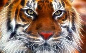 3d Tiger Wallpaper Hd - 1280x800 ...