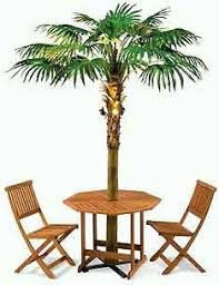 palm tree furniture. Perfect Furniture Collect This Idea Palm Tree Umbrella On Palm Tree Furniture L