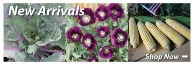garden seed. Garden Seed | Vegetable Catalog Company RH Shumway