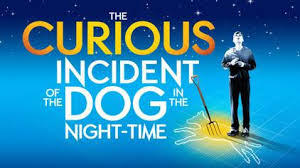 the curious incident of the dog in the nighttime essay what is night time like written by simon stephens play novel characters christopher john francis boone 15 year old maths five burning questions star