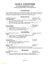 Resume Format Free Download New E Page Resume Layout Free Download