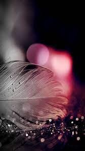 Feather wallpaper, Sparkle wallpaper ...