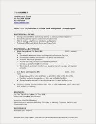 Resume Skills Examples Customer Service Ataumberglauf Verbandcom