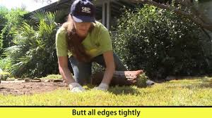 Diy Sod How To Install Sod Here Are All The Details Youtube