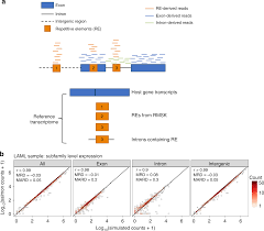 Nc Smart Chart Patient Portal Transposable Element Expression In Tumors Is Associated With