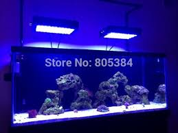 find more pet s information about new style dimmable led aquarium light white blue 120w 55x3w