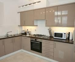 Design Small Kitchen Layout Kitchen Designs For Small Homes Kitchen Designs For Small Homes