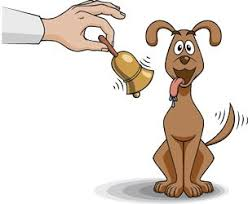 Classical Conditioning In The Classroom 7 Examples Of Classical Conditioning In Everyday Life