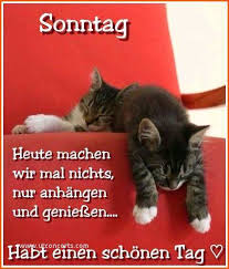 Schönes Wochenende Sprüche Lustig Traumhaft Sehr Gut Animals And