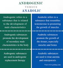 Difference Between Androgenic And Anabolic Definition