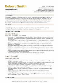 Director Of Sales Resume Samples QwikResume Beauteous Director Of Sales Resume