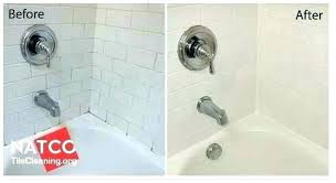 remove mold from shower how